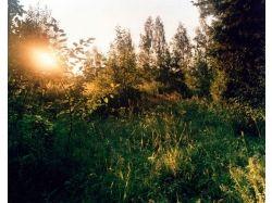Красивые картинки природы восход солнца 2