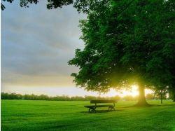 Красивые картинки природы восход солнца 5