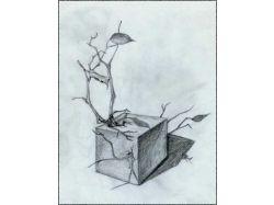 Красивые картинки карандашом животные вконтакте 6