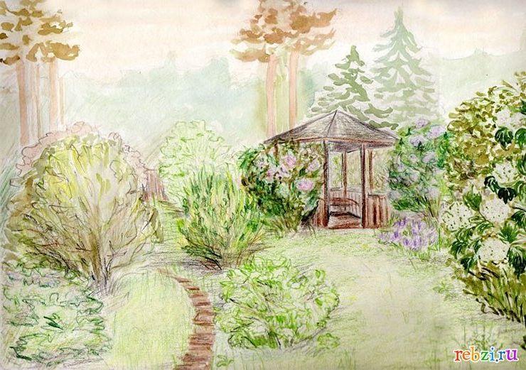 Дизайн рисунки природа