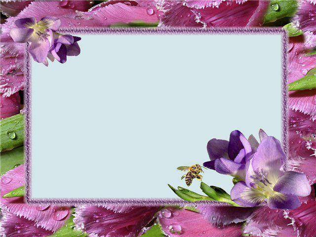 Цветы рамки для поздравлений с днем рождения