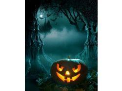 Хэллоуин картинки прикольные 9