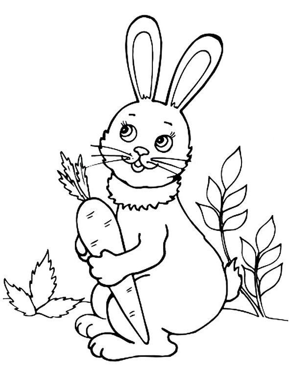 Раскраска зайца длинные уши