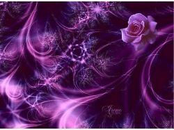 Фиолетовые картинки 9