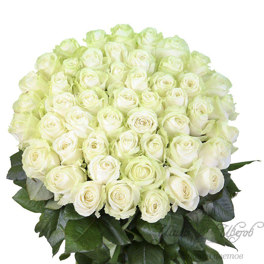 Белые розы на день рождения открытка 7418 30