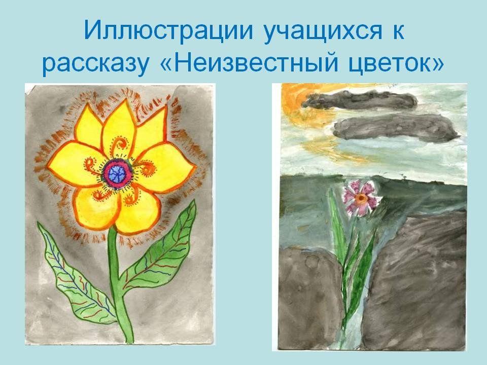 Рисунок цветка в рассказе неизвестный цветок