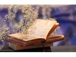 Картинки цветы и книги