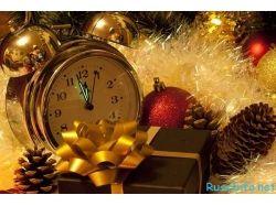 Новогодние фотографии картинки 7