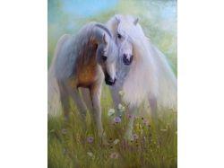 Очень красивые картинки лошадей
