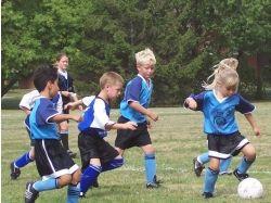 Дети и спорт фото