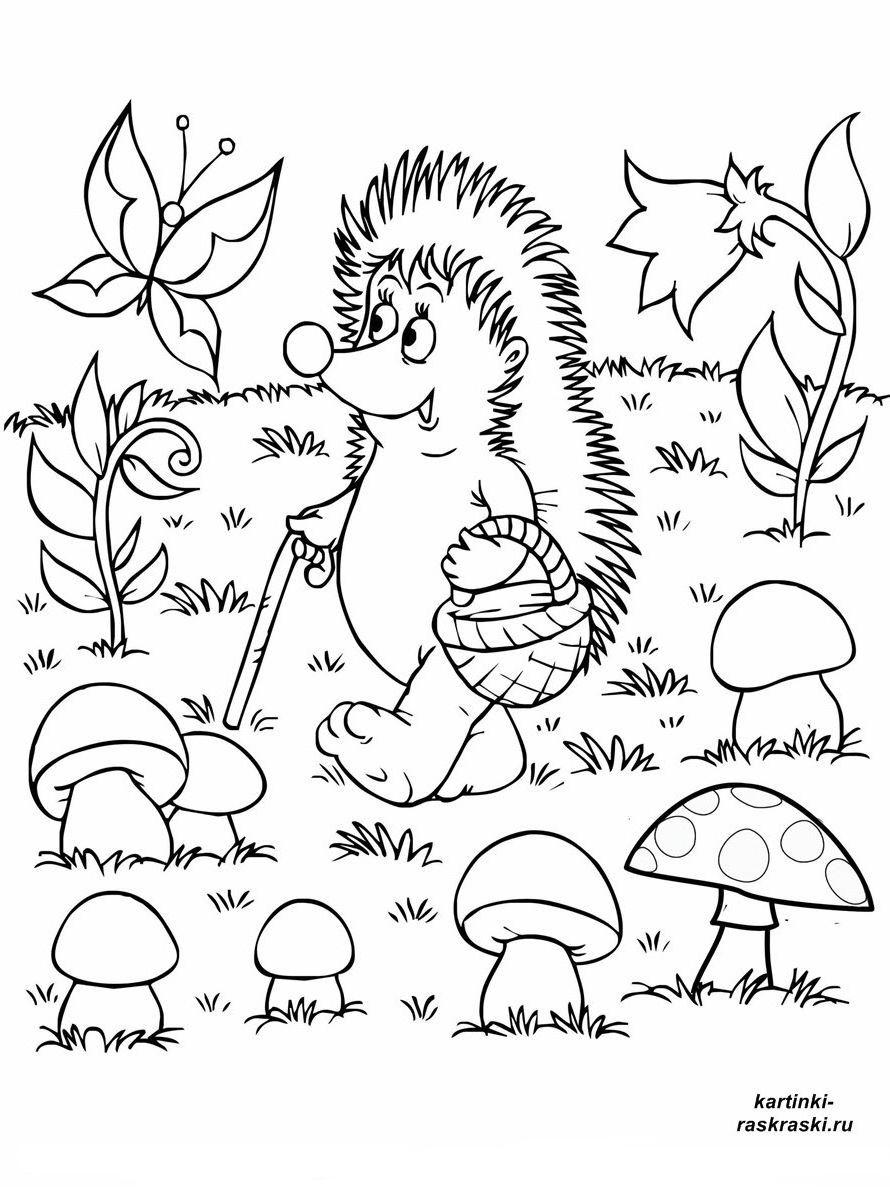 Раскраски грибная поляна