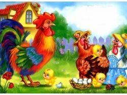 Курицы картинки 4