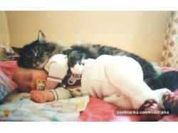Дети фото спят 3