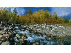 Сибирь картинки 5