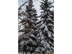 Башкирия в фото зима 2