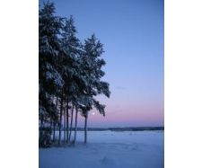 Финляндия зимой фото 6