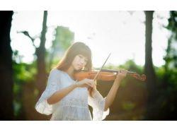 Картинки скрипка 2