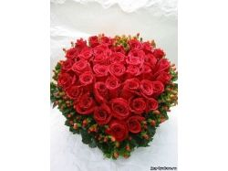 Цветы любовь картинки 3