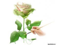 Цветы любовь картинки 5