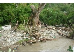 Наводнение картинки 2