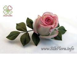 Новые картинки цветы 3