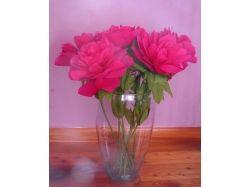 Фото цветы из бумаги 3