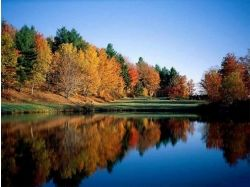 Картинки рисунки осень 4