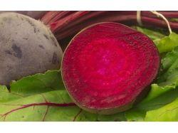 Осенние овощи и фрукты 1
