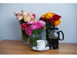 Цветы фото лютики 4