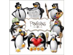 Картинки пингвины 6