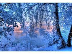 Скачать картинки зима на компьютер 1