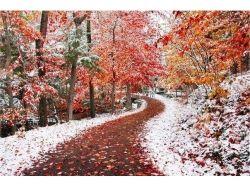 Картинки начало зимы 4