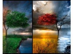 Картинки лето зима весна осень 6