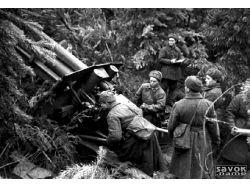 Великая отечественная война оружие картинки 1