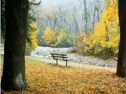 Картинки осень в парке 3