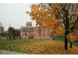 Картинки осень в парке 4