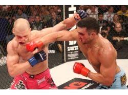 Боксерский спорт фото 5
