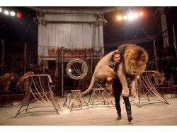 Картинки цирка 4