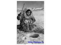 Фото эскимосы 7