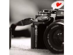 Любовь картинки черно белые 3