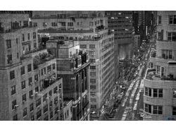 Любовь картинки черно белые 5