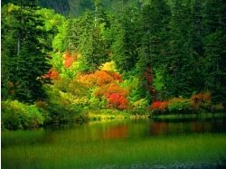 Ранняя осень фото 1