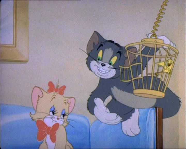 Tom Jerry all'arrembaggio - Film in Streaming per