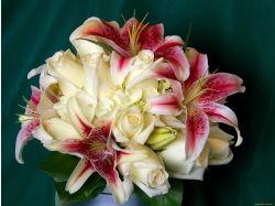 Фото цветы лилии розы 7