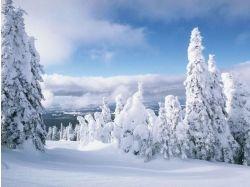 Фото зима зимние обои 7