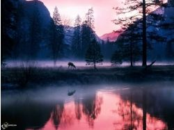 Фото вода в тумане 4
