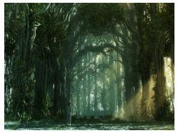 Фэнтези картинки лес 7