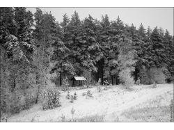 Фото зима пейзаж высокого разрешения 7