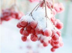 Фото зима пейзаж высокого разрешения 4