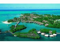Остров маврикий подводный мир 4